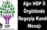 Ağrı HDP İl Örgütünden Regayıp kandil Mesajı