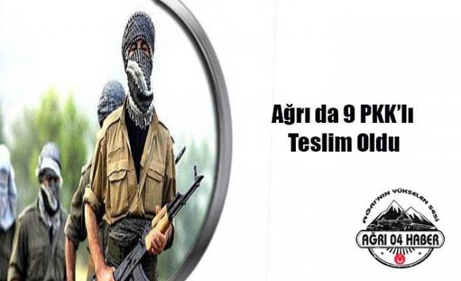 Ağrıda 9 PKKlı Teslim Oldu