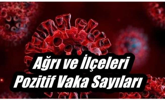 Ağrı ve İlçeleri Corona Virüs Vaka Sayıları