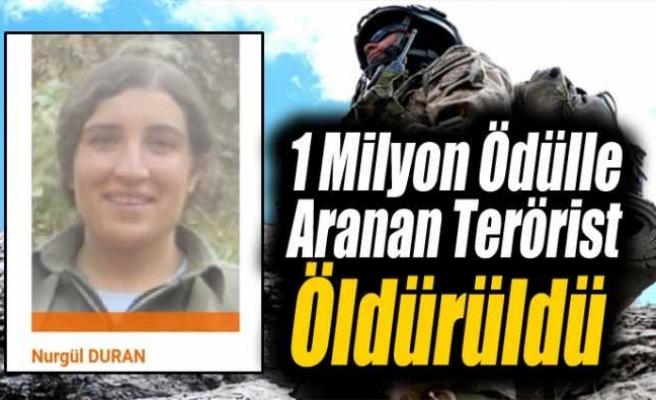 1 Milyon Ödülle Aranan PKK'lı Öldürüldü
