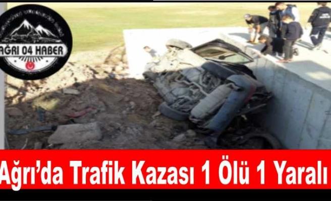 Ağrı'da Ölümlü Trafik Kazası