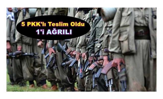 1'i Ağrılı 5 PKK'lı Teslim Oldu