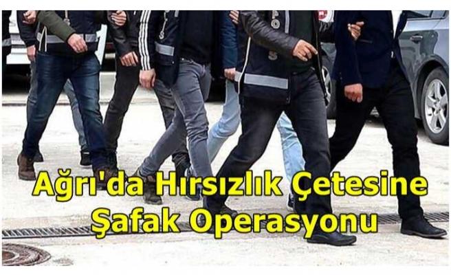 Ağrı'da Hırsızlık Çetesine Şafak Operasyonu