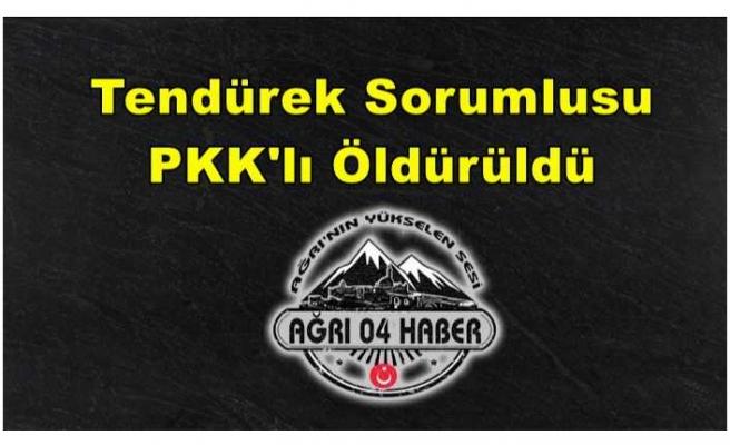 Biri Tendürek Sorumlusu 3 PKK'lı Öldürüldü