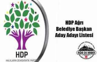 Ağrı HDP Belediye Başkan Aday Adayları Listesi
