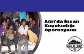 Ağrı'da İnsan Kaçakçılığı Operasyonu