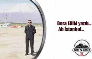 Bora Erim İstanbul Seçimlerini Yazdı