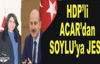 HDPli Acar'dan Bayrak Jesti