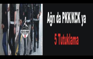 Ağrı da PKK ya 5 Tutuklama