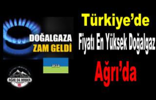 Türkiye'nin En Pahalı Doğalgazı Kullanan...
