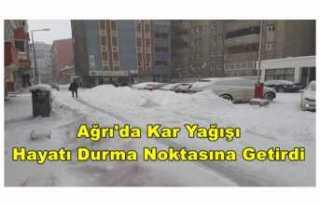 Ağrı'da Kar Yağışı Hayatı Durma Noktasına...