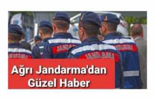 Ağrı Jandarma'dan Nefes Kesen Operasyon