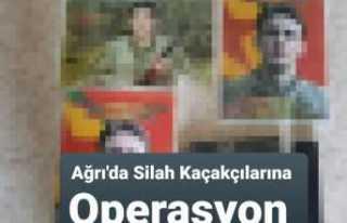 Ağrı'da Silah Kaçakçılığı Operasyonu...