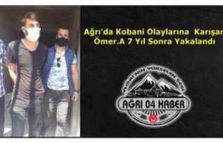 Ağrı'da Kobani Olaylarına Karışan Şahıs...