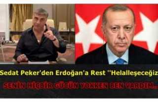 Peker, Erdoğan'a Seslendi ''Sen Yokken...