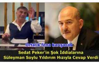 Sedat Peker Suçladı ve Süleyman Soylu Cevap Verdi