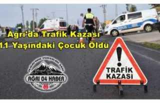 Ağrı'da Trafik Kazası Bir Çocuk Hayatını...