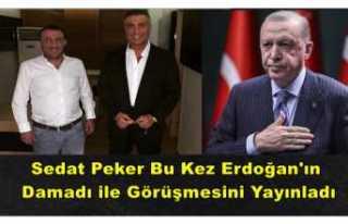 Sedat Peker Cumhurbaşkanı'nın Damadı İle...