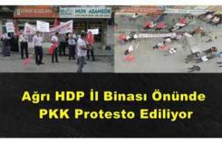 Ağrı'da Bir Gurup HDP Önünde PKK yı Protesto...
