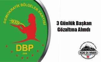 Ağrı da PKK/KCK ya 24 Gözaltı