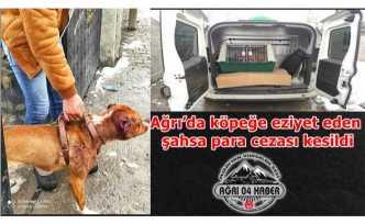 Ağrı'da Köpeğe Eziyet Eden Şahsa Rekor Para Cezası