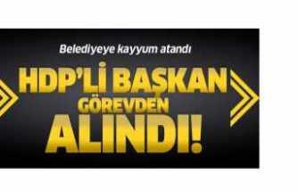 HDP Güne Kayyumla Başladı