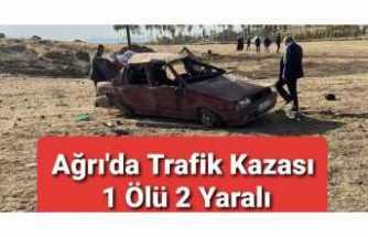 Ağrı'da Trafik Kazası 1 Ölü 2 Yaralı