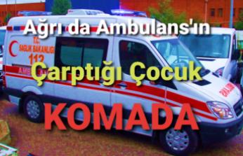 Ağrı da Ambulans Kaza Yaptı