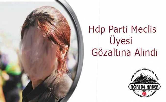 Hdp Parti Meclis Üyesi Gözaltına Alındı