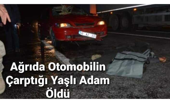 Ağrı da Otomobilin Çarptığı Yaşlı Adam Öldü