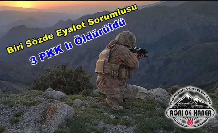 PKK'nın Erzurum Sorumlusu Ağrı'da Öldürüldü