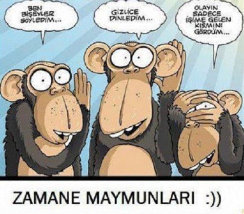 Zamane Maymunları